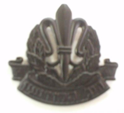 ISRAEL INTELLIGENCE UNIT BADGE