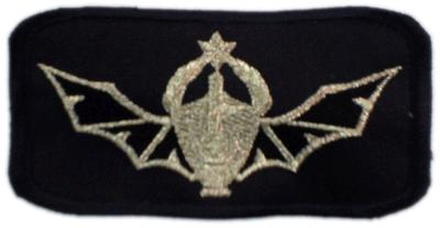 PATCH - NAVY SEALS